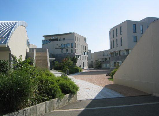 3-4 juillet 2008, Institut d'Asie Orientale, Lyon, 2ème rencontre du Réseau DocAsie